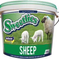 Sweetlics Sheep