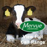 Mervue Calf Range