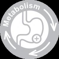 Super Booster metabolism medal