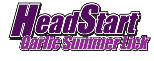 Garlic Summer Lick logo